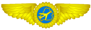 Департамент по авиации
